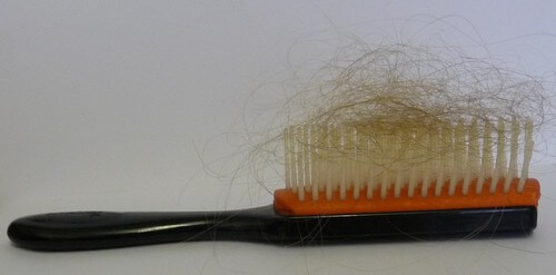 Brush with an excessive amount of hair loss