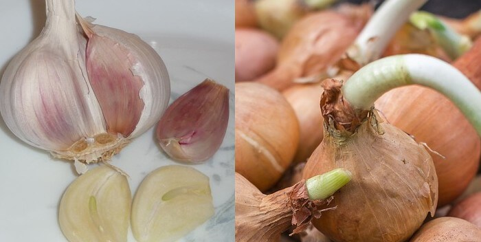 Raw garlic bulb, garlic cloves and onions